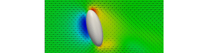 Resolved flow around an ellipsoidal particle
